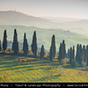 Italy - Tuscany - Toscana - Val d'Orcia - Orcia Valley - UNESCO World Heritage Site - Typical view of the rolling hills - Historic, artistic & landscape area of extraordinary beauty in the morning light