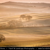 Italy - Tuscany - Toscana - Val d'Orcia - Orcia Valley - UNESCO World Heritage Site - Typical view of the rolling hills - Historic, artistic & landscape area of extraordinary beauty in the morning mist