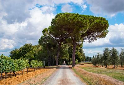 Bagno Vignioni_Hike-11