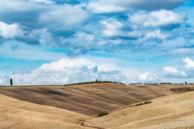 Tuscany_Fields-3