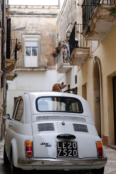 Fiat, Puglia 2019