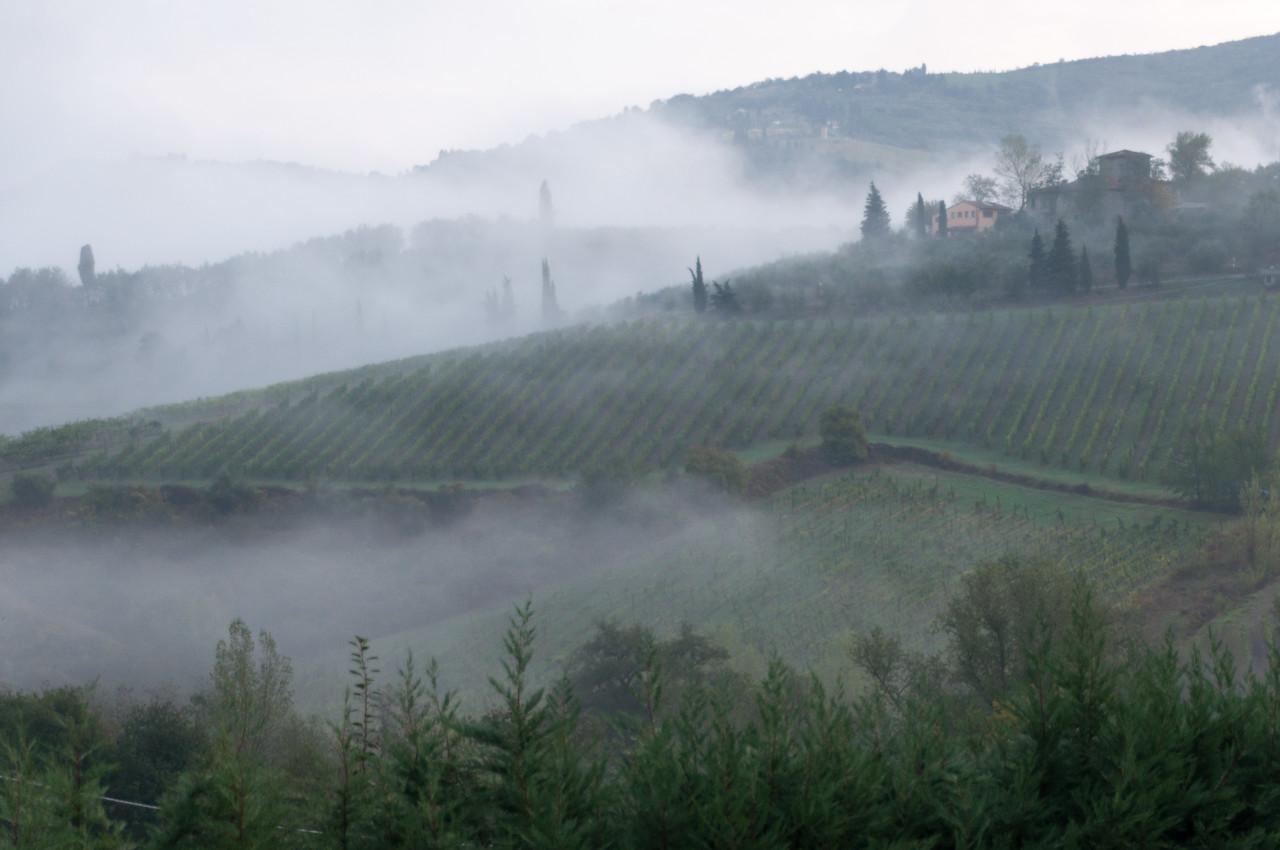 From Poggio Asciutto in Greve in Chianti, Italy