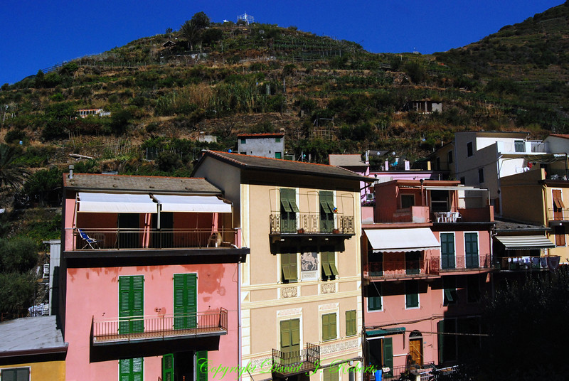View of village and colorful buildings, Manarola, Cinque Terre, Italy