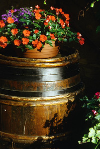 Alsatian Vintner's Wine Barrel