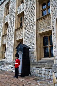 Guard at Tower of London London, England