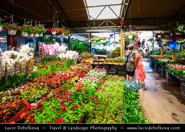 Europe - Macedonia - Skopje - Скопје - Historical City Center - Old Bazaar - Стара чаршија - Stara čaršija - One of oldest & largest marketplaces in Balkans - Traditional market with local products & flowers