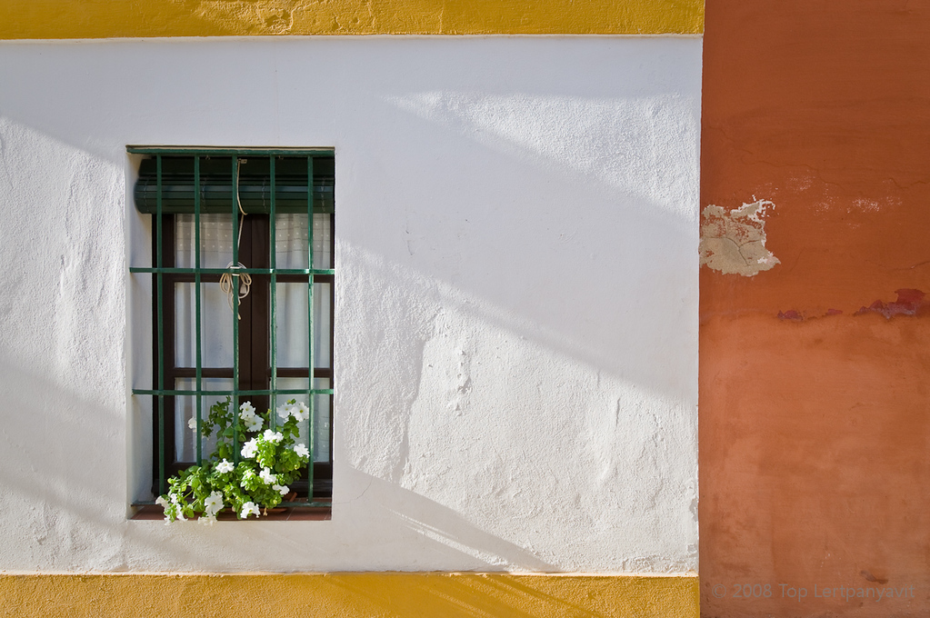 Flowers in a window in the Santa Cruz district in Sevilla