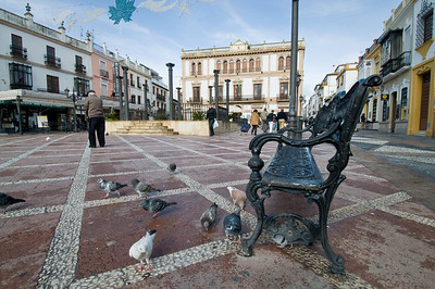 Pigeons feed at Plaza del Socorro in Ronda