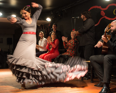 Passion of Flamenco