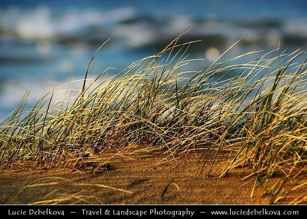 Netherlands - Sunset Time at Rijksdorp Beach near Wassenaar in Zuid-Holland <br /> <br /> Camera Model: NIKON D70; Lens: 72.00 - 210.00 mm f/2.8; Focal length: 210.00 mm; Aperture: 5.0; Exposure time: 1/400 s; ISO: 250