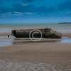 """""""Arromanches""""<br /> <br /> To better appreciate the scale, please notice the gent just to the left of a hulk of a component of the 70 year old """"Mulberry harbor"""". <br /> <br /> ~ Image by Martin McKenzie All Rights Reserved ~"""
