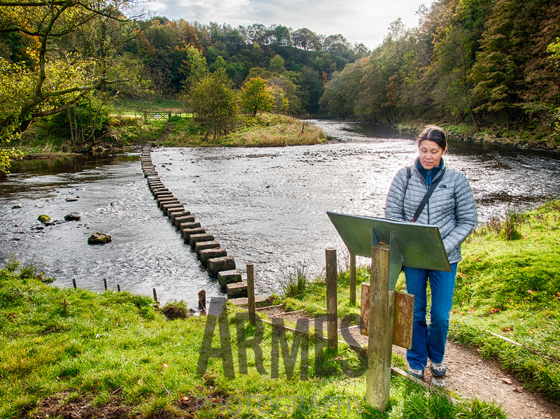 Stepping Stones at the River Hodder, Whitewell