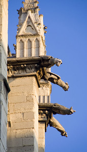Gargoyles are tube-shaped sculptures that direct rainwater away from the building.