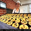 Portugal - Lisbon - Pasteis de Belem Store - Best and most famous place for Pasteis de Nata - Final Product after Baking