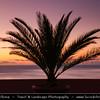 Europe - Portugal - Portuguese archipelago - Madeira Island - South Coast - Funchal City - Madeira's Capital - Coastal town on shores of Atlantic Ocean at Sunset