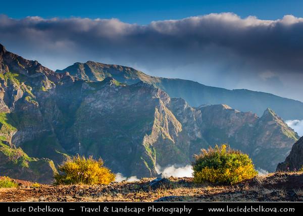 Europe - Portugal - Portuguese archipelago - Madeira Island - Pico do Arieiro - Madeira island's third highest peak - 1,818 m high (5965 feet) - Morning view over spectacular rugged mountain landscape