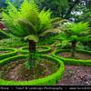 Europe - Portugal - Portuguese archipelago - Madeira Island - Tropical green paradise