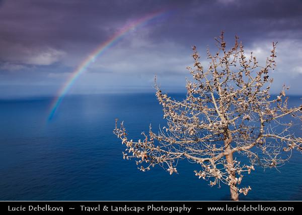 Europe - Portugal - Portuguese archipelago - Madeira Island - North Coast - Dramatic landscape under stormy weather
