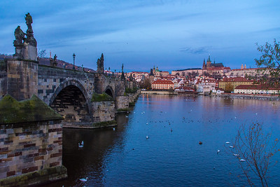 Charles Bridge at dawn