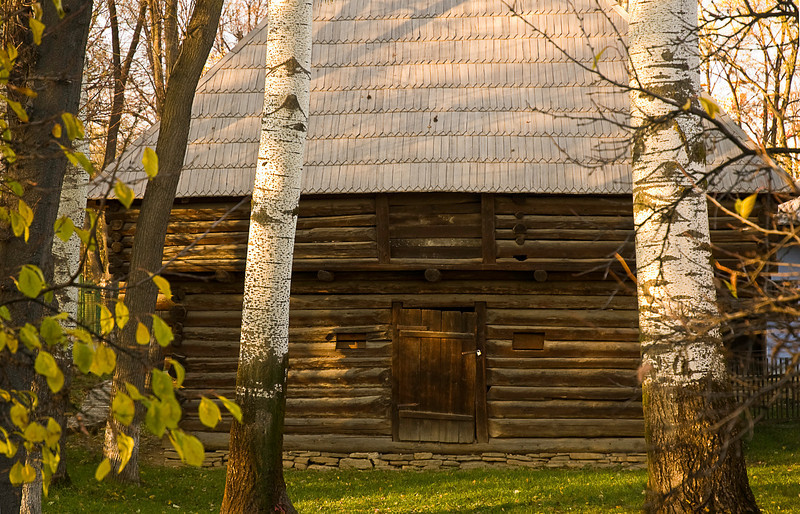 Log home, Village Muesum