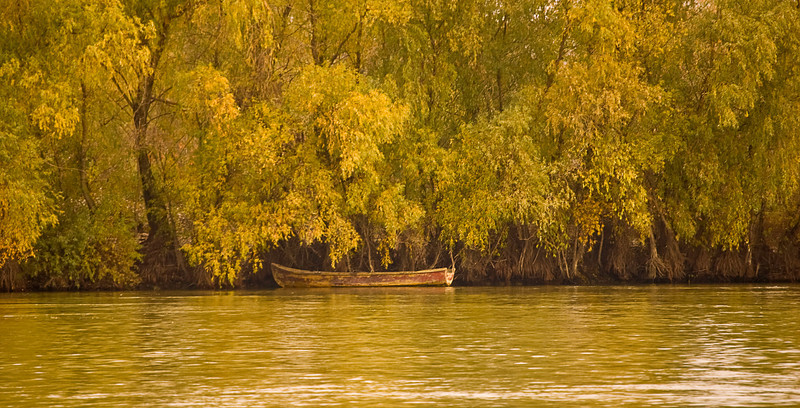 Also a UNESCO World Heritage Site, the Danube Delta is not only rich in history, it is rich in wildlife, especially birds. At certain times of the year -- late Spring and early Fall -- millions of migratory birds follow the flyway.