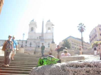 Rome 2010 - Turtles