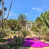 In the Botanical Garden