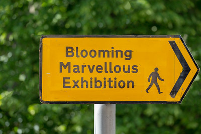 Blooming Marvellous Exhibition