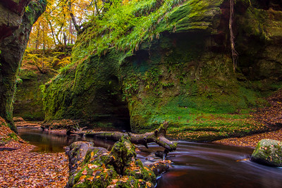 Finnich Glen, the Devil's Pulpit