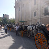carriages waitng for tourists, in the plaza, next to Seville Cathedral