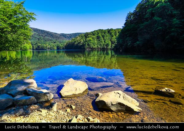 Europe - Slovak Republic - Slovensko - Eastern Slovakia - Vihorlat Protected Landscape Area - Sea Eye lake - Morské oko - Veľké Vihorlatské jazero - Vihorlat Mountains national nature reserve - CHKO Vihorlat