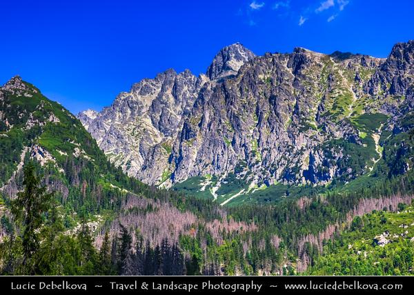 Europe - Slovakia - Slovak Republic - Slovensko - High Tatras - Vysoke Tatry - View from Hrebienok (1,285m) - Very popular tourist destination & starting point for hiking trips to valleys of Veľká and Malá Studená dolina or to Slavkovský štít (peak)