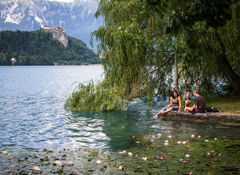 Glacial lake in the Julian Alps in northwestern Slovenia. A medieval castle stands above the lake in the north shore.