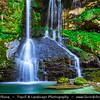 Europe - Slovenia - Slovenija - Julian Alps - Slap Virje - Beautiful waterfall with emerald green pool located near hamlet of Plužna village not far from Bovec