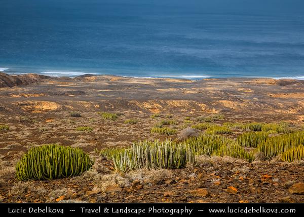 Europe - Spain - España - Canary Islands - Islas Canarias - the Canaries - Canarias - Fuerteventura - Atlantic Coast - Cofete Beach