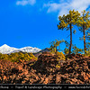 Europe - Spain - España - Canary Islands - Islas Canarias - the Canaries - Canarias - Tenerife Island - Teide National Park - UNESCO World Heritage Site - Teide-Pico Viejo stratovolcano - Mount Teide Volcano 3,718-metre highest point in Spain and the highest point above sea level in the islands of the Atlantic
