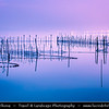 Europe - Spain - España - Valencia Province - Valencia's Albufera Natural Park - L'Albufera lake with fishing nets