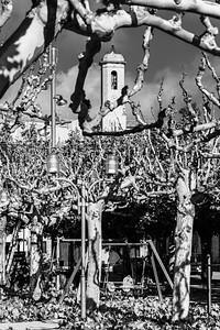 La Pobla de Cervoles, Spain, 2019