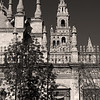 Cathedral of Seville with Buttresses #9s - Seville, Spain