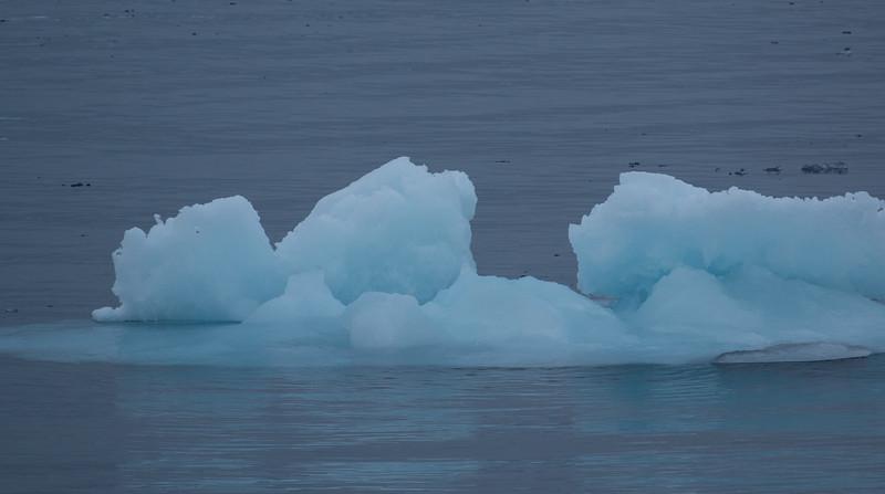 Drift Ice, north of Kapp Platen