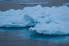 Drift Ice, north of Kapp Platen