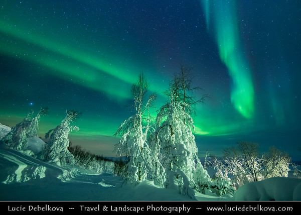 Europe - Sweden - Kingdom of Sweden - Sverige - North of the Arctic Circle - Swedish Lapland - Lappland - Lapponia - Abisko National Park - UNESCO World Heritage Site - Laponian mountainous area under fresh cover of snow during winter time - Aurora borealis - Northern light - Produced by solar wind particles guided by Earth's field lines to the top of the atmosphere