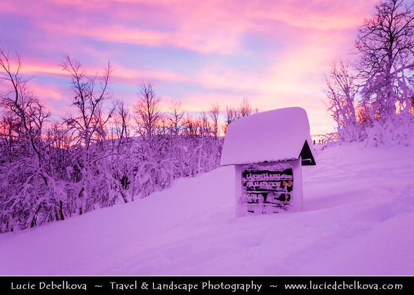 Europe - Sweden - Kingdom of Sweden - Sverige - North of the Arctic Circle - Swedish Lapland - Lappland - Lapponia - Abisko National Park - UNESCO World Heritage Site - Laponian mountainous area under fresh cover of snow during winter time