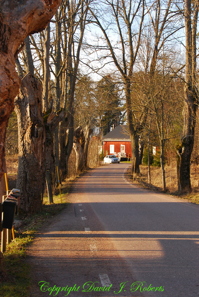 Small road north of Uppsala