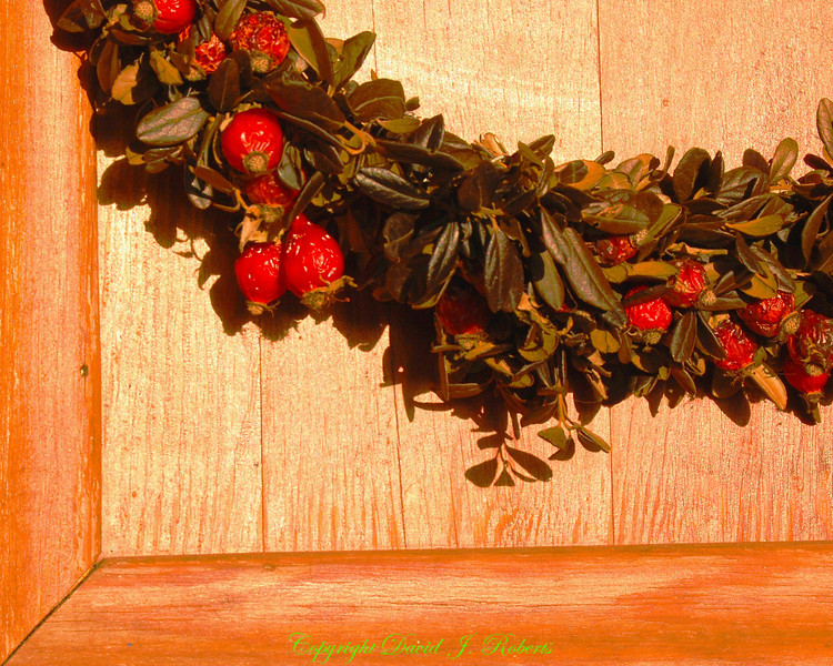 Rose hip wreath on door, Sweden