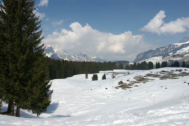 Ski Slopes. March 29th