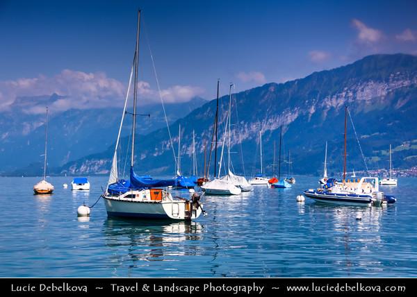 Europe - Switzerland - Swiss - Marina with boats in Faulensee on Thunersee - Lake Thun with backdrops of Alps mounains during sunny summer day