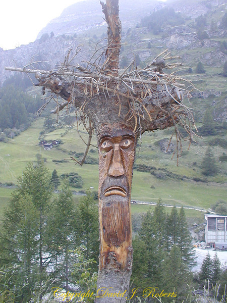 Old man in the wood, Zermatt, Switzerland