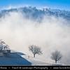 Europe - Switzerland - Swiss - Solothurn Canton - Jura Mountains - Juragebirge - Massif du Jura - Sub-alpine mountain range located north of the Western Alps - Area around Ruins of Frohburg Castle - Hilly frozen winter snowy landscape submerged in sea of fog