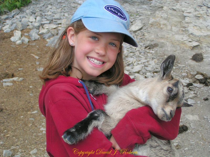 What is better than a little goat to hug?
